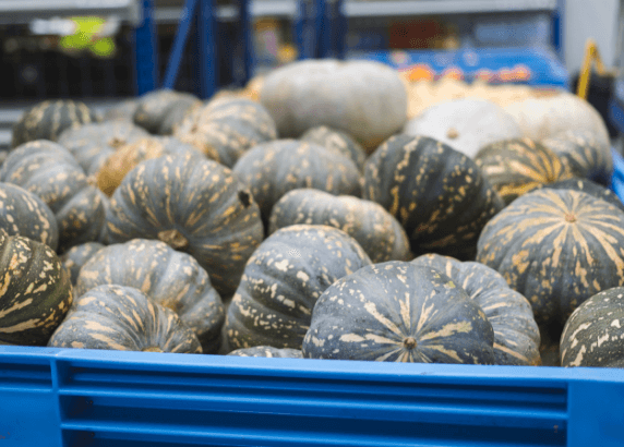 Pumpkins waste not want not